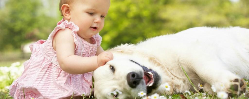 FINAL2 - bebe com cachorro na grama
